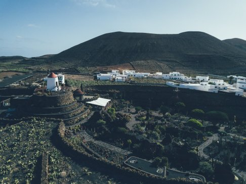 Drohnenaufnahme Jardín de Cactus Lanzarote