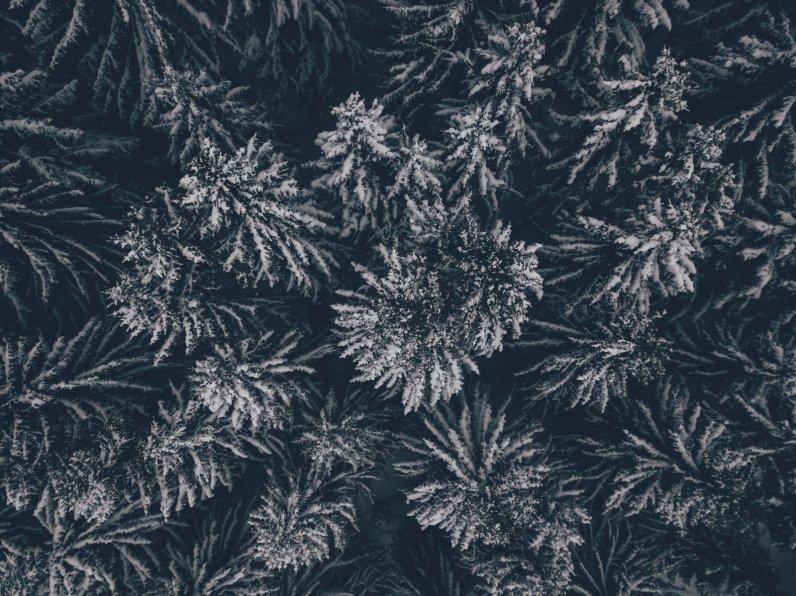 Winterrauschen im Tannheimer Tal