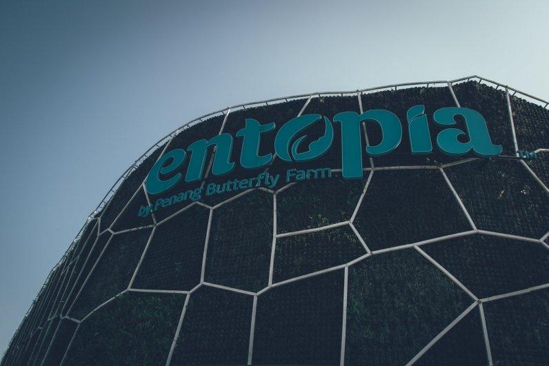 Entopia - Butterfly Farm