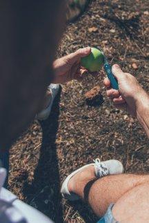 Thies teilt einen Apfel mit Victorinox Taschenmesser