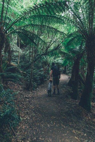 Otway Forest Park mit Kind