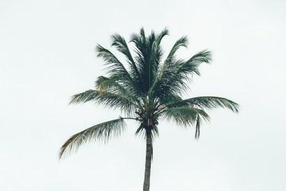 05_Costa_Rica_0031