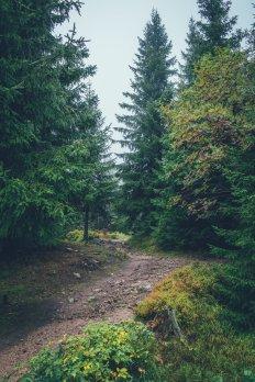 09_erzgebirge_0038