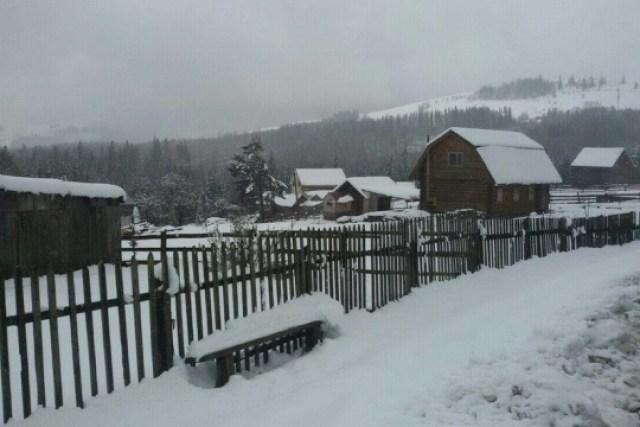 На Прикарпатье выпало до 15 сантиметров снега