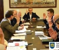 Авария с каретой во Львове: город выделил 50 тысяч на лечение девочки