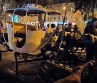 Авария с каретой во Львове: девочке грозит потеря ноги
