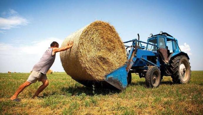 Может ли фермер противостоять латифундистам на рынке земли