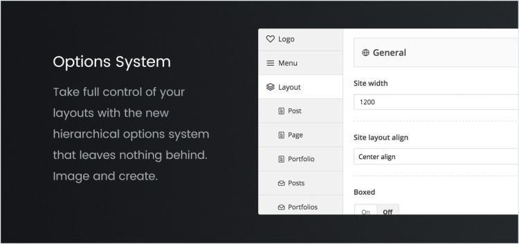 Options System