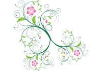 Vector Swirls and Floral Swirls