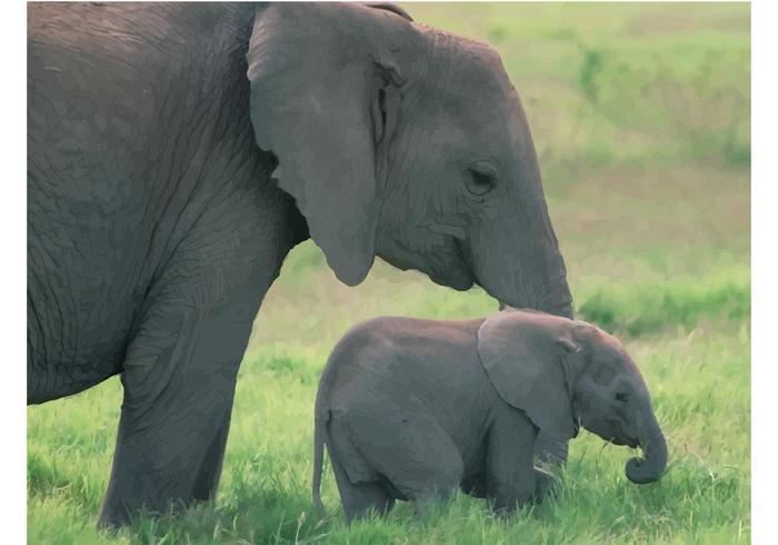 Cute Elephant Design Wallpaper Baby Elephant Download Free Vector Art Stock Graphics