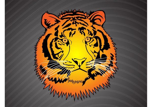 Tiger Head Vector - Free Art Stock