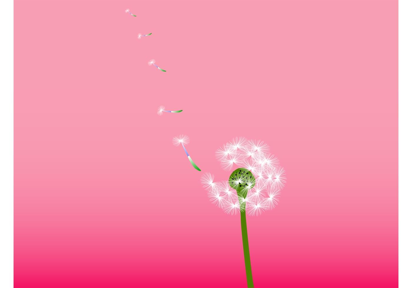 Dandelion Vector Download Free Vector Art Stock