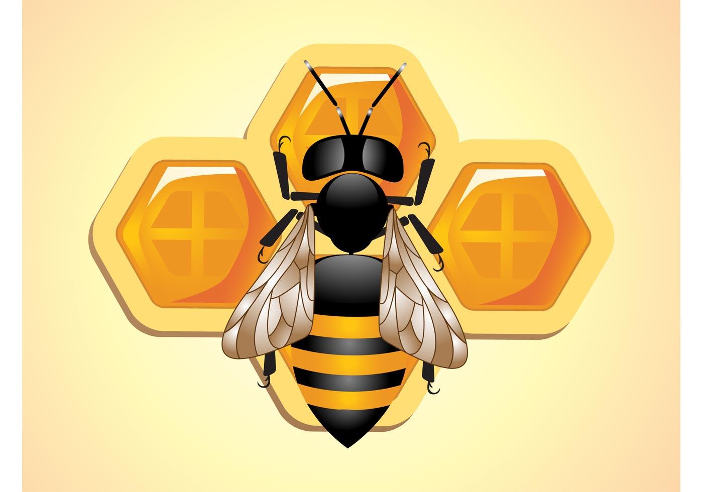 Bee Vector  Download Free Vector Art Stock Graphics  Images