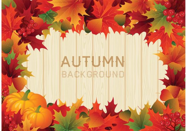 Vector Colorful Autumn Leaves Border - Free