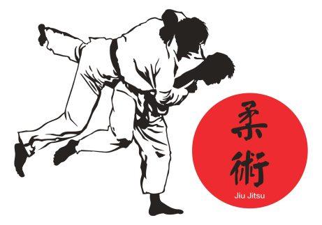 Bildresultat för jiu jitsu