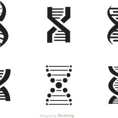 Chromosome Structure Diagram Honda Gcv160 Engine Parts Set Of Doble Helix Icons Vector - Download Free Art, Stock Graphics & Images