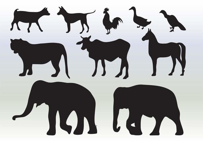 Animals Silhouette Collection Download Free Vectors Clipart Graphics Amp Vector Art
