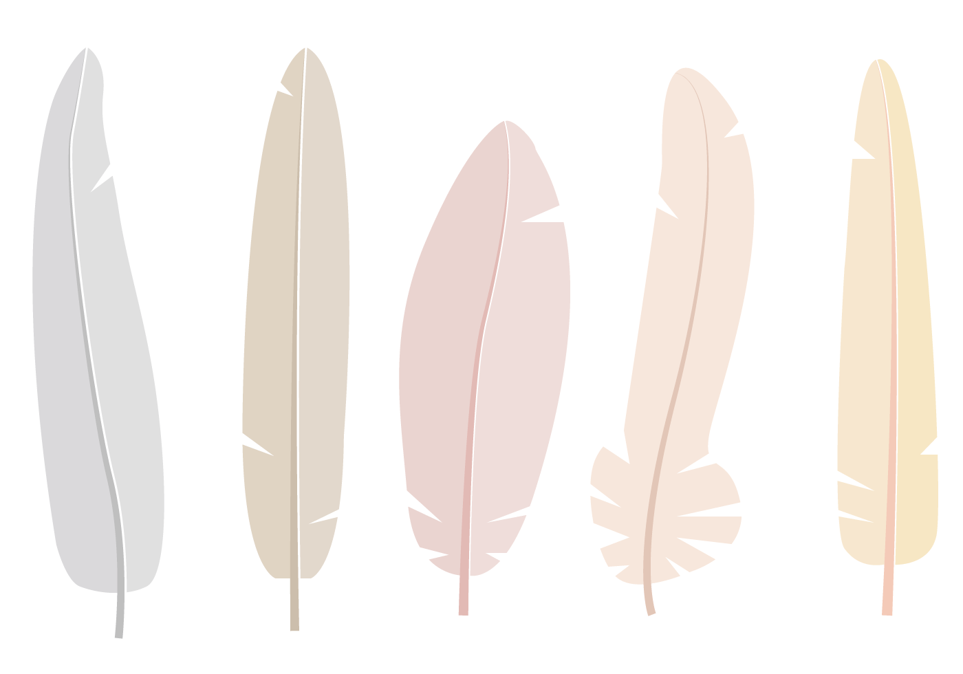 Free Feathers Vector  Download Free Vectors Clipart