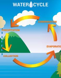 Water cycle diagram vector also download free art stock rh vecteezy