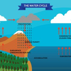 Water Cycle Diagram With Explanation 2002 Chevy Cavalier Exhaust System Vector Download Free Art
