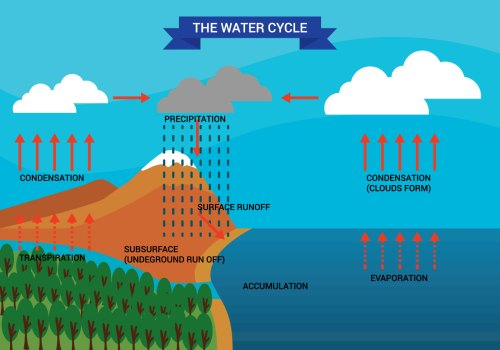 small resolution of water cycle diagram vector