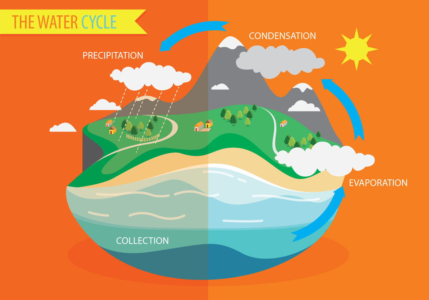 water cycle diagram with explanation ba falcon ecu wiring vector download free art