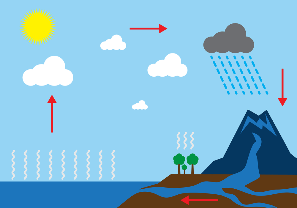 medium resolution of free water cycle diagram vector