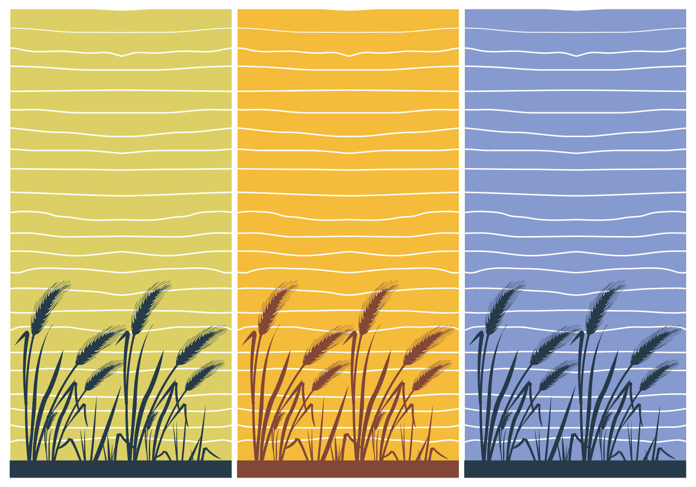 Hd Wallpaper Texture Fall Harvest Rice Wallpaper Illustration Of The House Vector Download