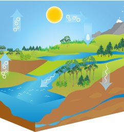 free water cycle diagram vector download free vector art stock graphics images [ 1400 x 980 Pixel ]