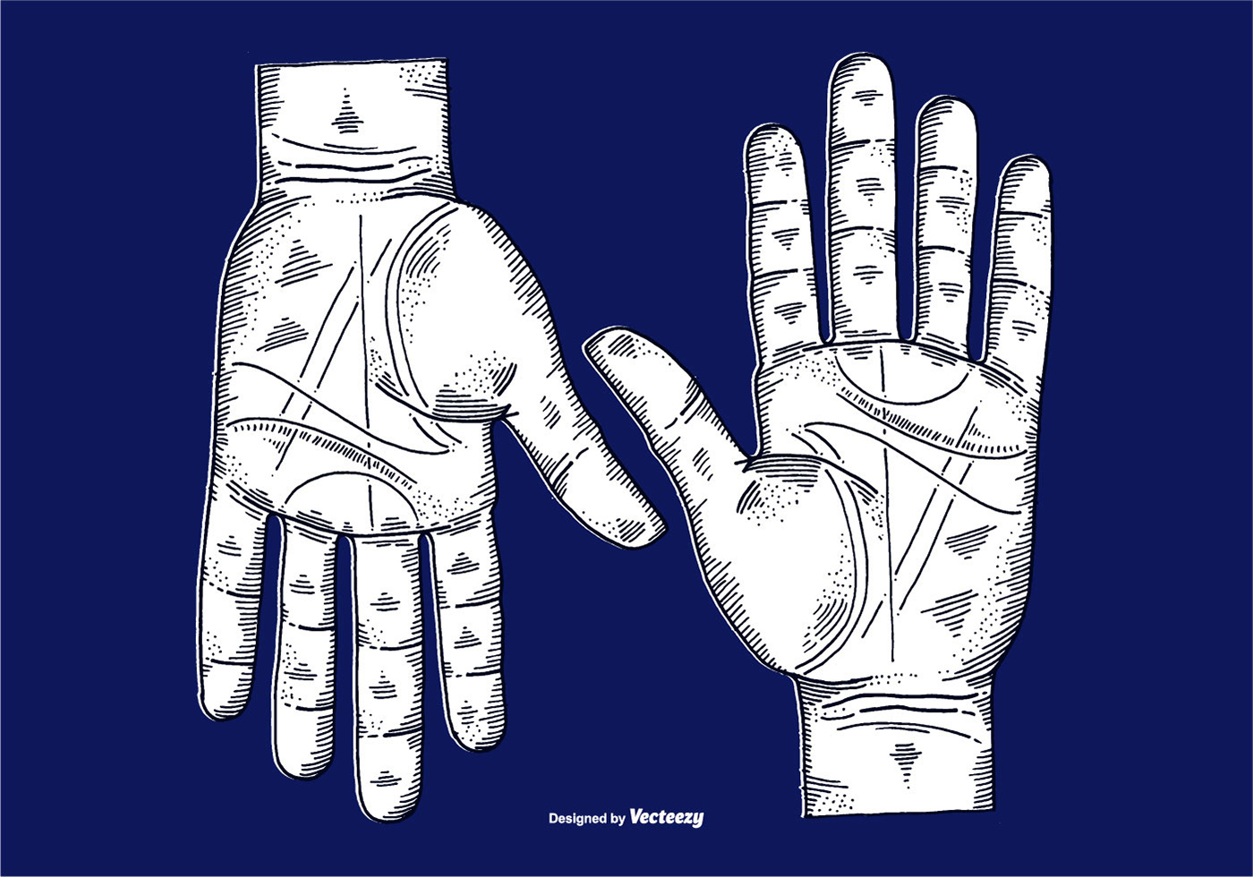 Vector Etched Hands