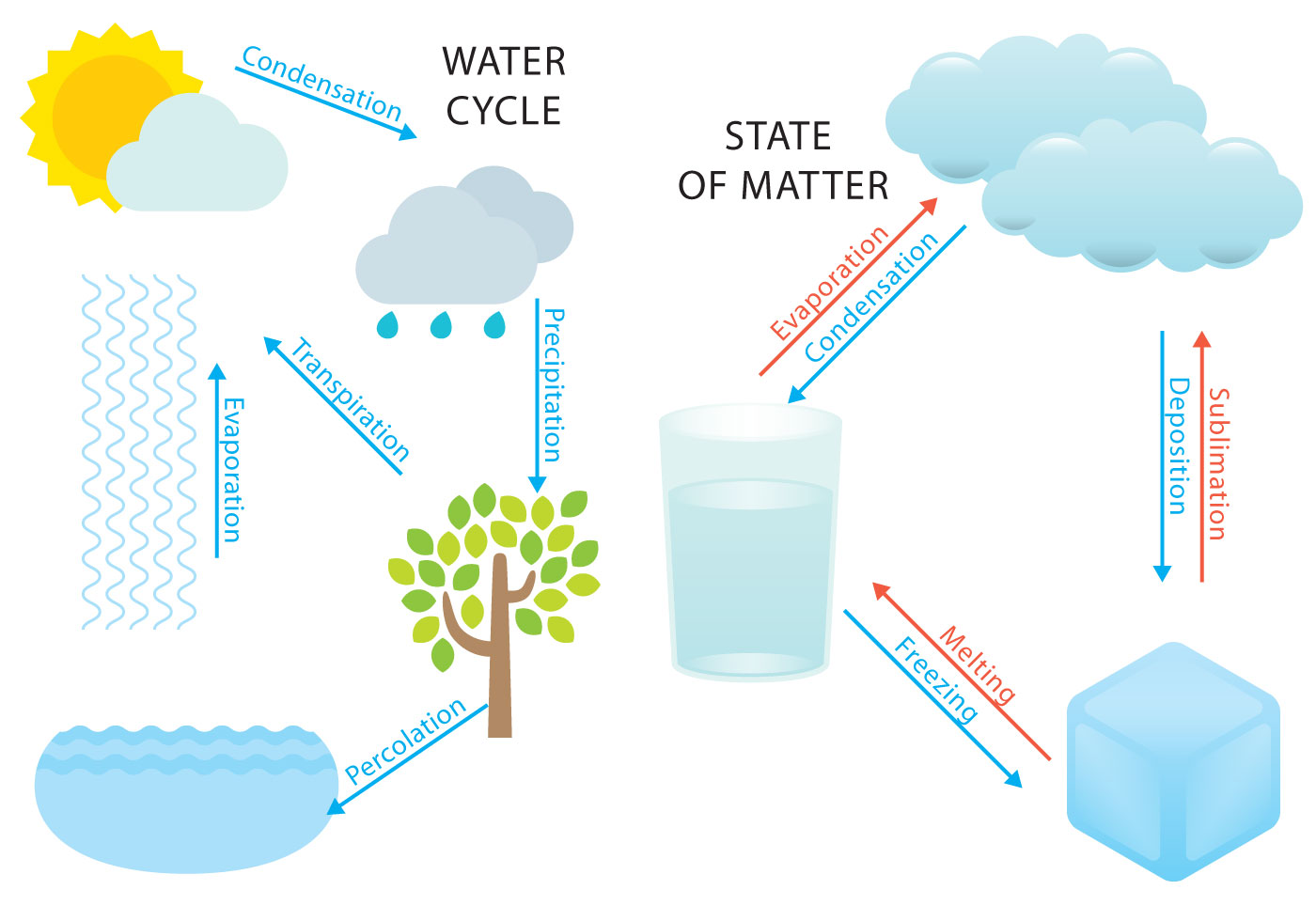 Water Cycle And States