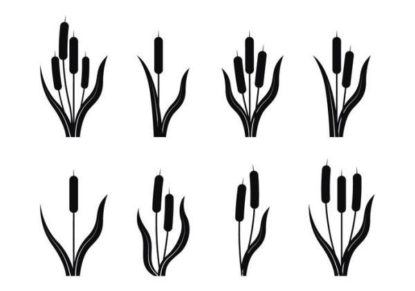 cattails silhouette
