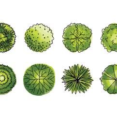 Shrub Graphic Symbols Diagram 2006 Hayabusa Wiring Tree Plan Free Vector Art 12356 Downloads