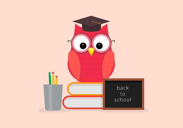 school owl student vector