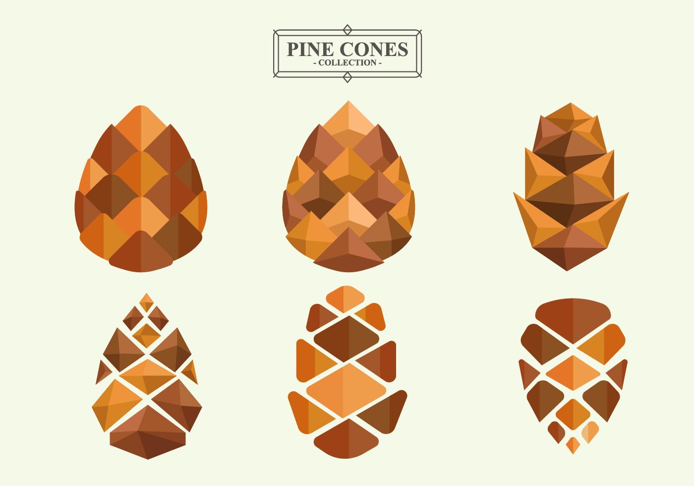 Pine Cones Flat Vector Collection Download Free Vector
