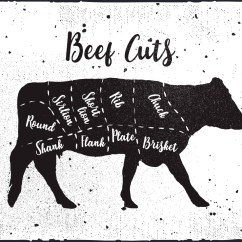 Cow Meat Diagram 1998 Chevy Silverado Wiring Beef Cuts Vector Background - Download Free Art, Stock Graphics & Images