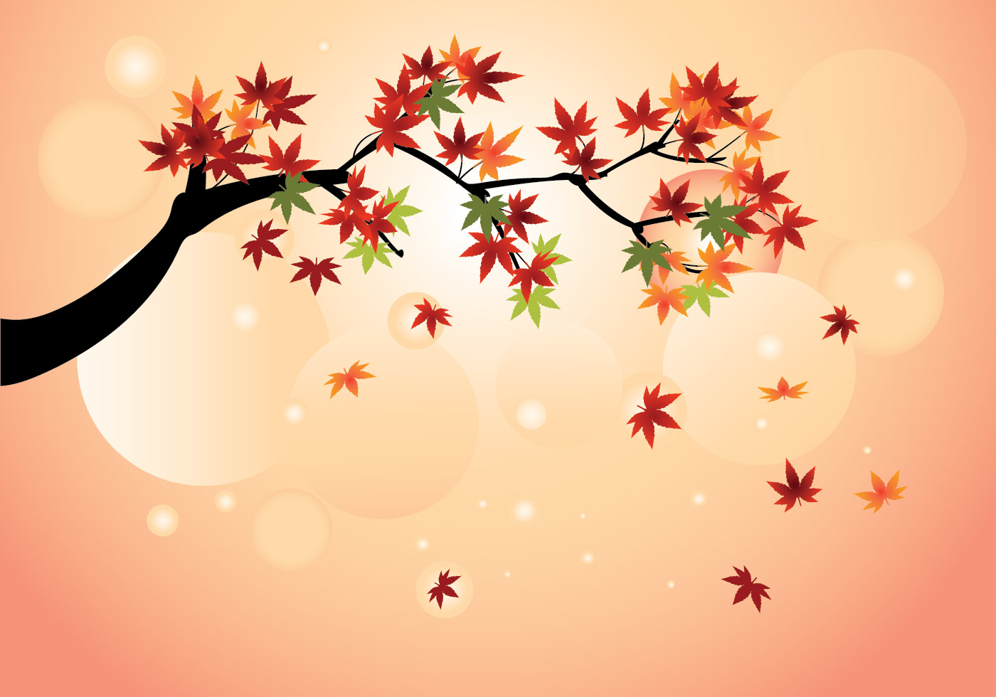 Maple Leaf Wallpaper For Fall Season Smooth Japanese Maple With Fall Maple Leaves Vector
