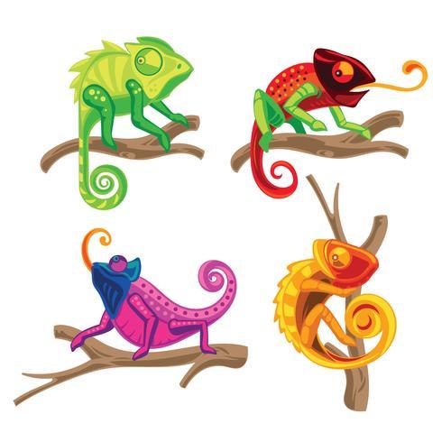 set of chameleon lizard