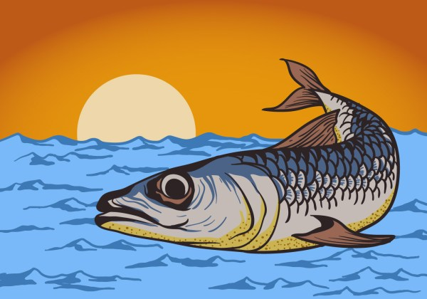 Sardine Fish Background - Free Vector Art Stock