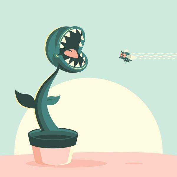 Venus Flytrap Flat Cartoon Illustration - Free