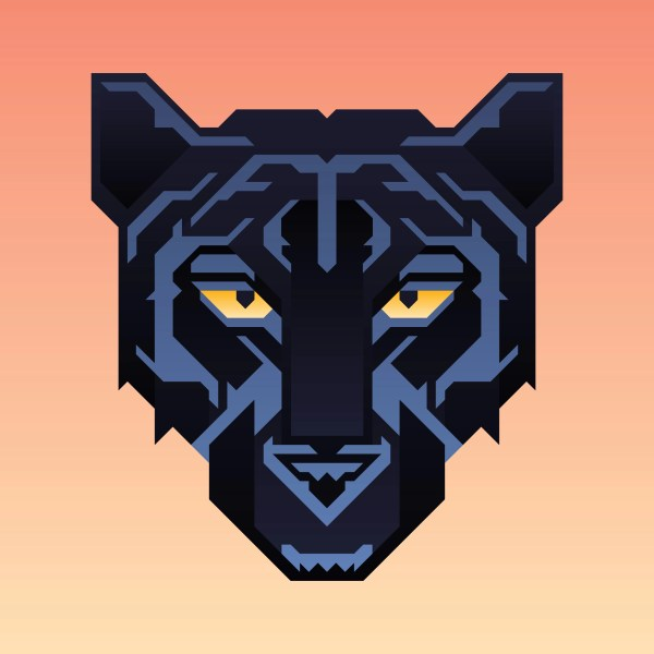 Black Panther Character Vector