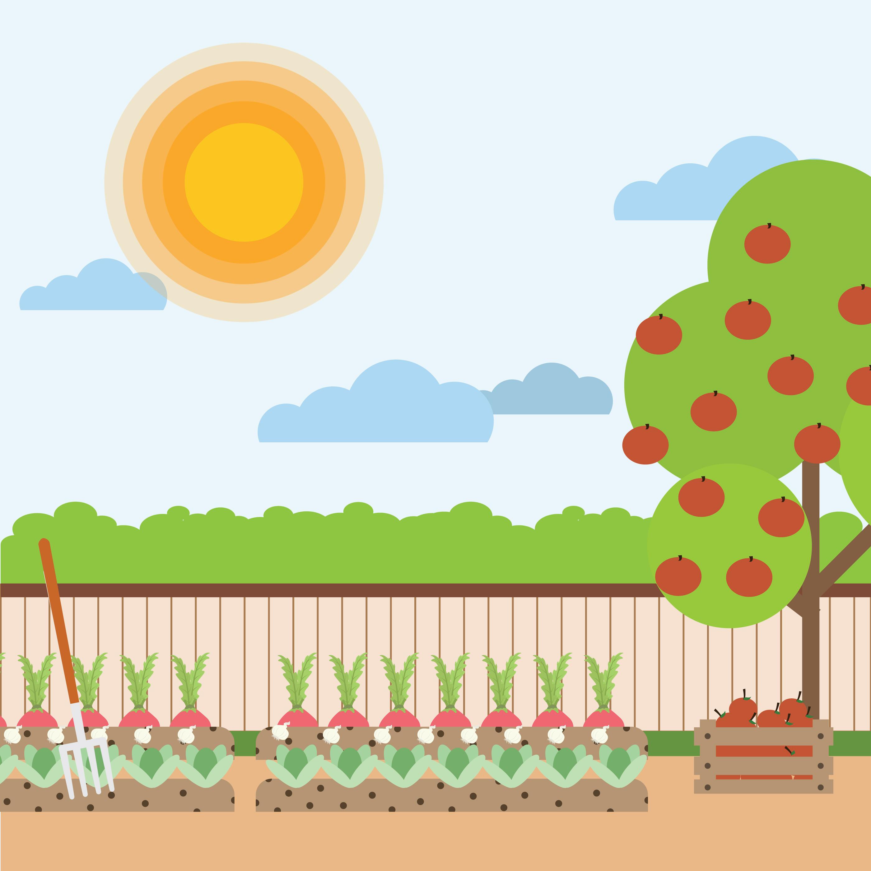Vegetable Garden Illustration Download Free Vectors Clipart Graphics Vector Art