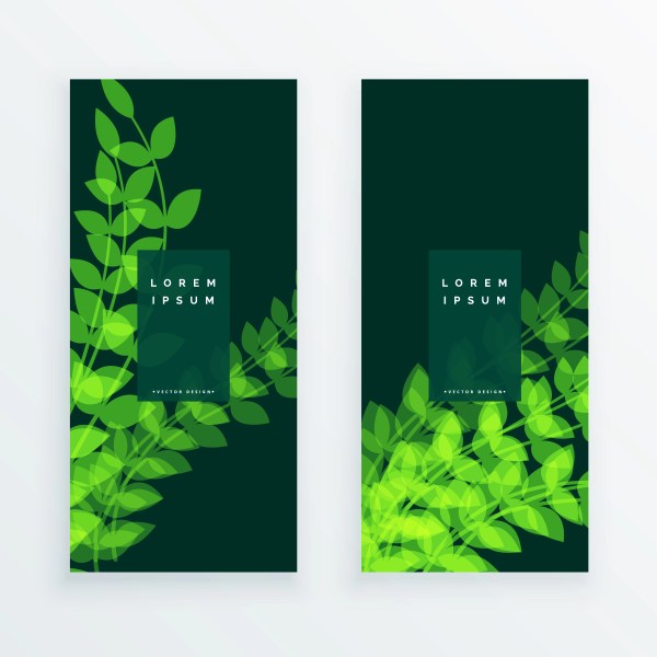 Leaf Nature Verticle Banner Card - Free Vector