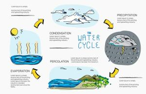 Water Cycle Hand Drawn Infographic Vector Illustration