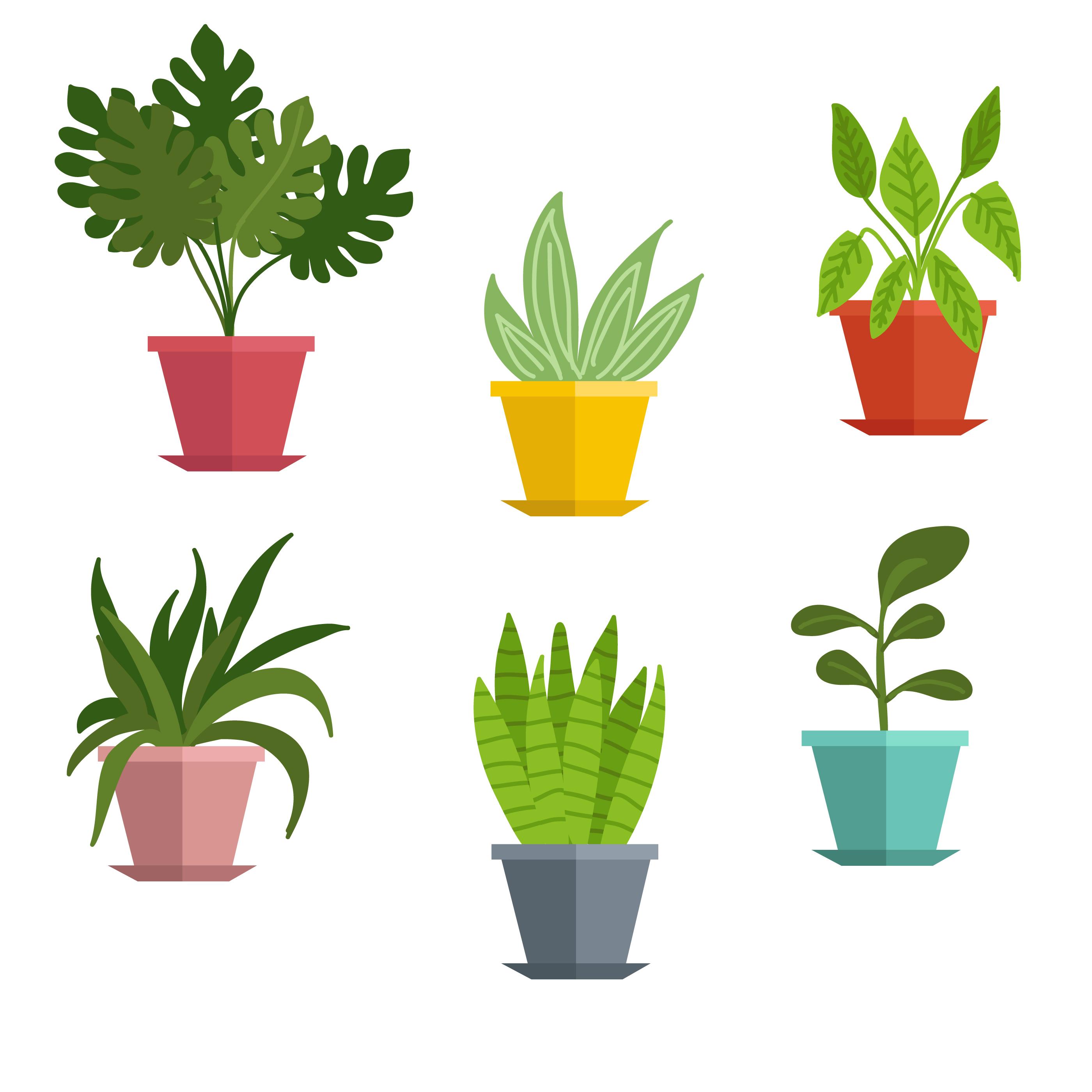 Plant Pot Free Vector Art  37107 Free Downloads