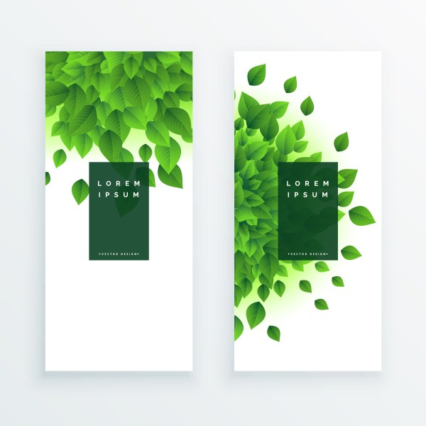 Green Leaves Vertical Banner Background - Free