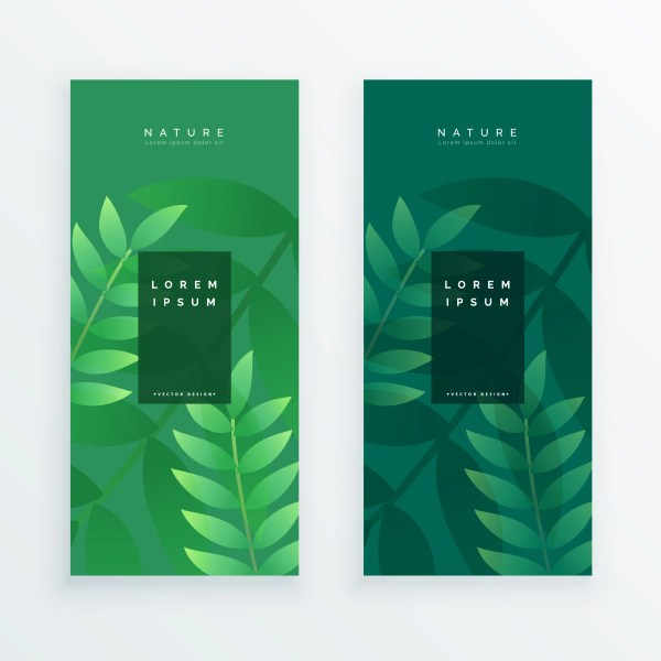 Set Of Two Vertical Leaves Banner - Free Vector
