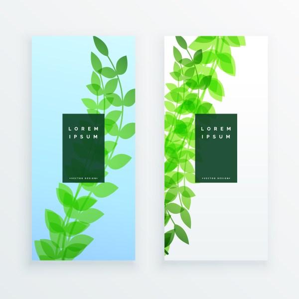 Green Vertical Leaves Banner Design - Free Vector