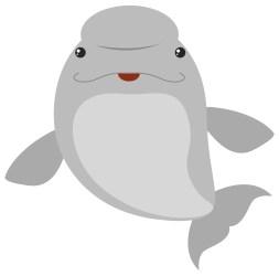 Beluga Whale Free Vector Art 10 Free Downloads