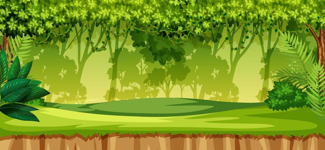 A green jungle landscape  Download Free Vector Art Stock Graphics  Images